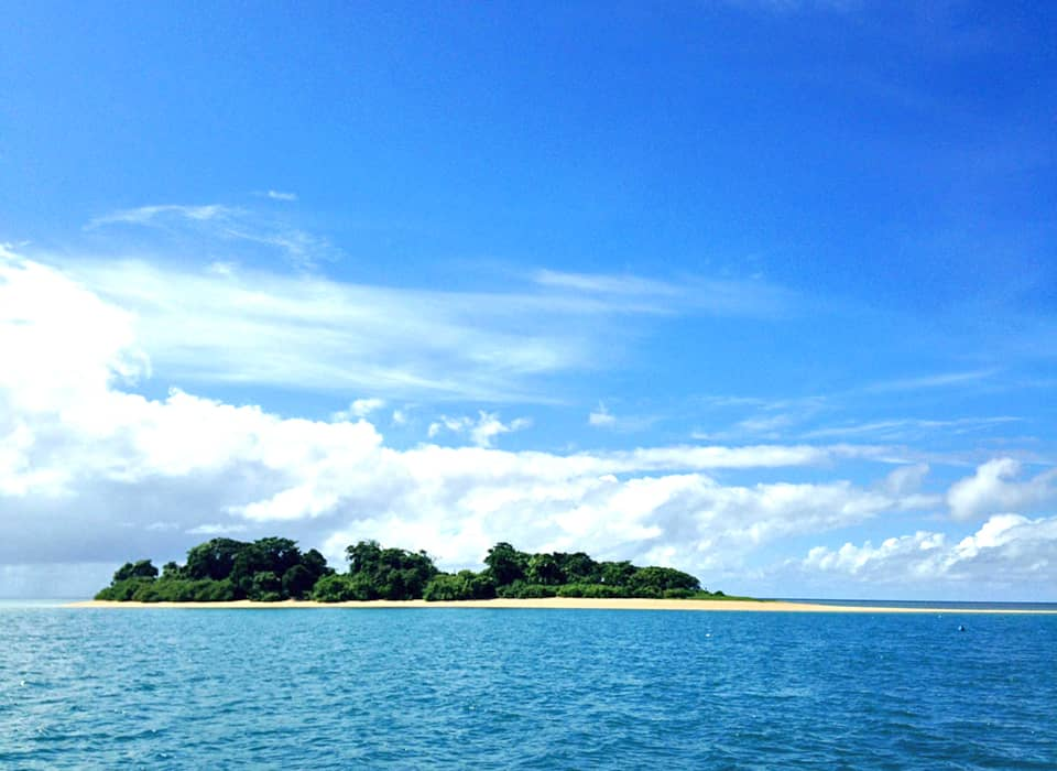 Bloomfield Reef and Island Tours